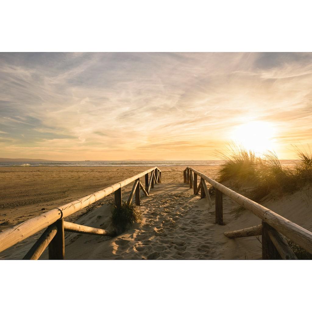 Papermoon Fototapete »Sonnenuntergangsdünen«, Vliestapete, hochwertiger Digitaldruck