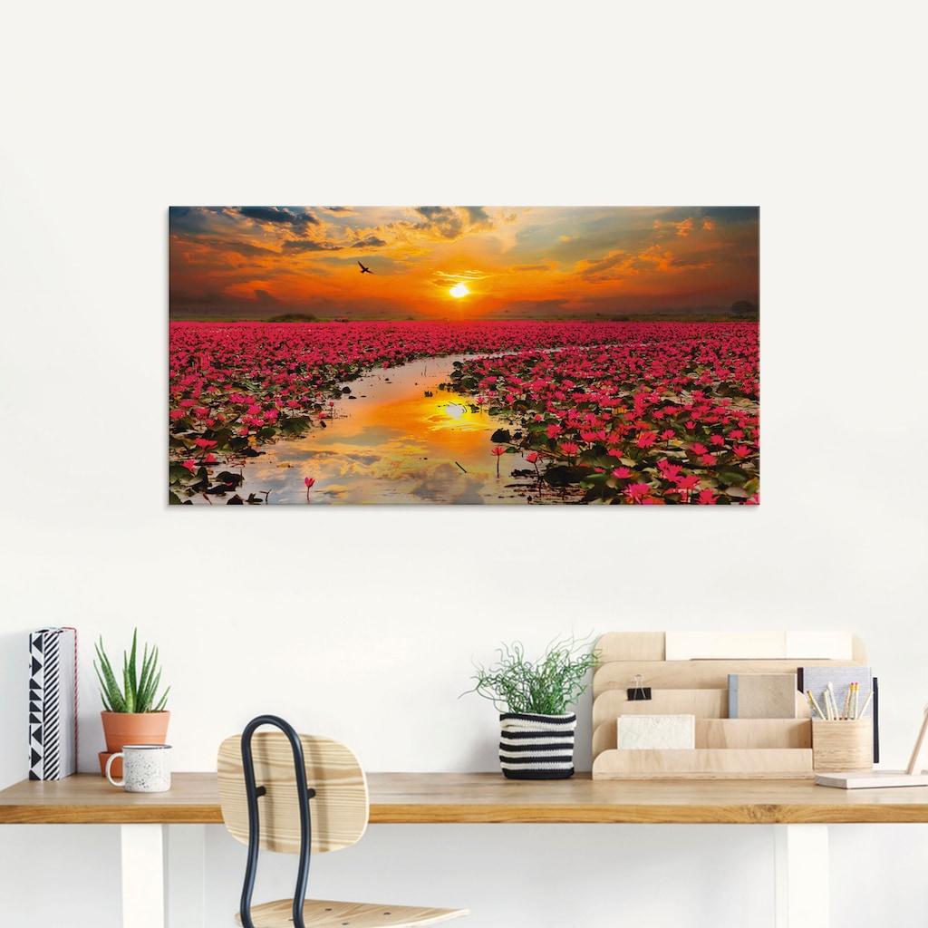 Artland Glasbild »Sonnenschein blühende Lotusblume«, Blumen, (1 St.)