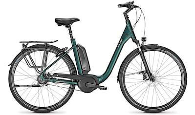 Raleigh E - Bike »KINGSTON PREMIUM«, 8 Gang Shimano Nexus Schaltwerk, Nabenschaltung, Mittelmotor 250 W kaufen