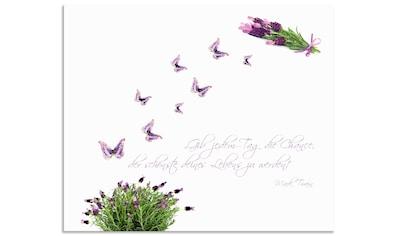 Artland Küchenrückwand »Lila Schmetterlinge an Lavendel«, selbstklebend in vielen... kaufen
