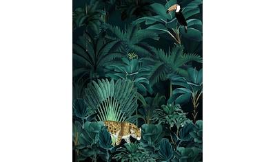 Komar Fototapete »Jungle Night«, bedruckt-floral-natürlich kaufen