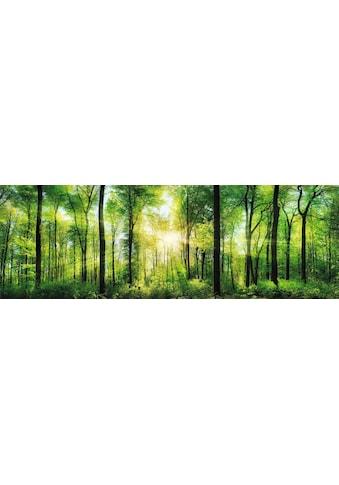Home affaire Deco-Panel »Sommerwald« kaufen