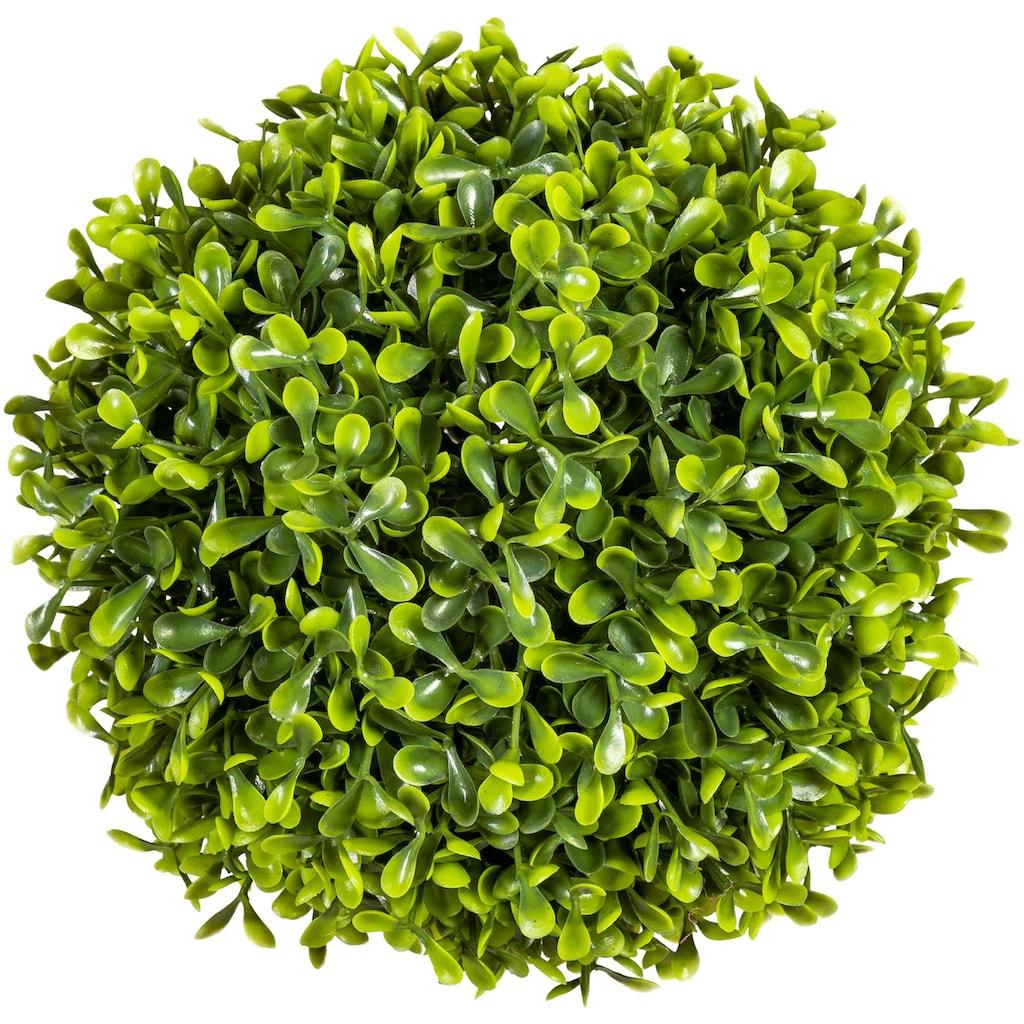 Creativ green Kunstpflanze »Buchsbaumkugel«