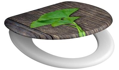 SCHÜTTE WC - Sitz »Gingko & Wood«, mit Absenkautomatik kaufen