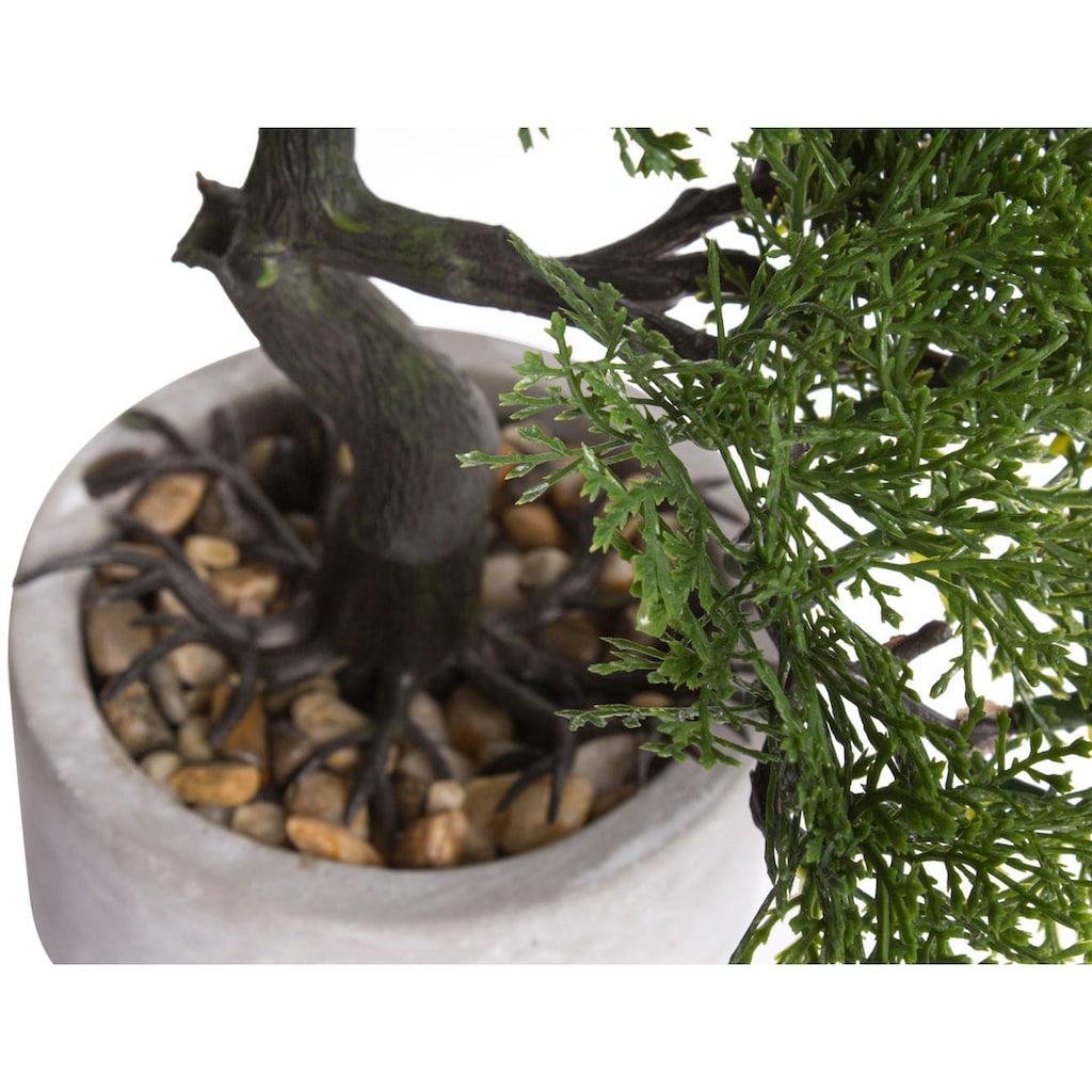 Botanic-Haus Kunstbonsai »Ceder Bonsai«