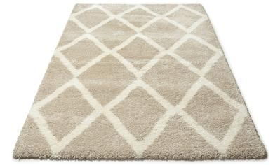 DELAVITA Hochflor-Teppich »Munja«, rechteckig, 40 mm Höhe, Gesamthöhe ca. 40mm kaufen
