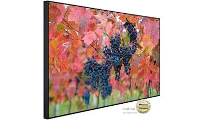 Papermoon Infrarotheizung »Weintrauben«, sehr angenehme Strahlungswärme kaufen