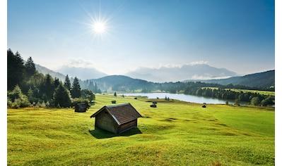 Komar Fototapete »Bergwiese vor Karwendel«, mehrfarbig-natürlich-bedruckt kaufen