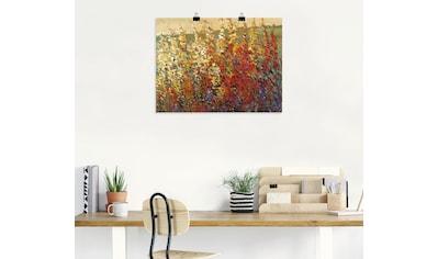 Artland Wandbild »Feld mit Herbstblumen I« kaufen