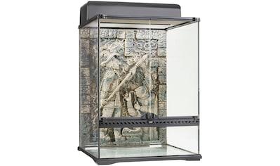 Exo Terra Terrarium »Aztec«, BxTxH: 45x45x60 cm kaufen