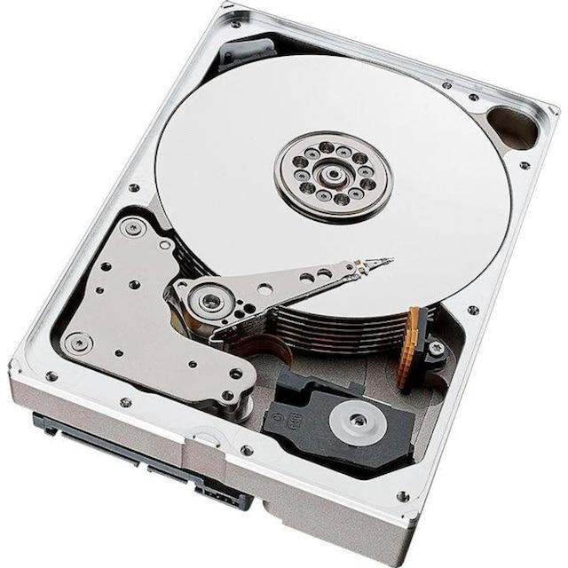 Seagate »SkyHawk AI« HDD-Festplatte 3,5 ''
