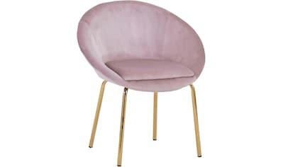 SIT Polsterstuhl »Sit&Chairs« kaufen