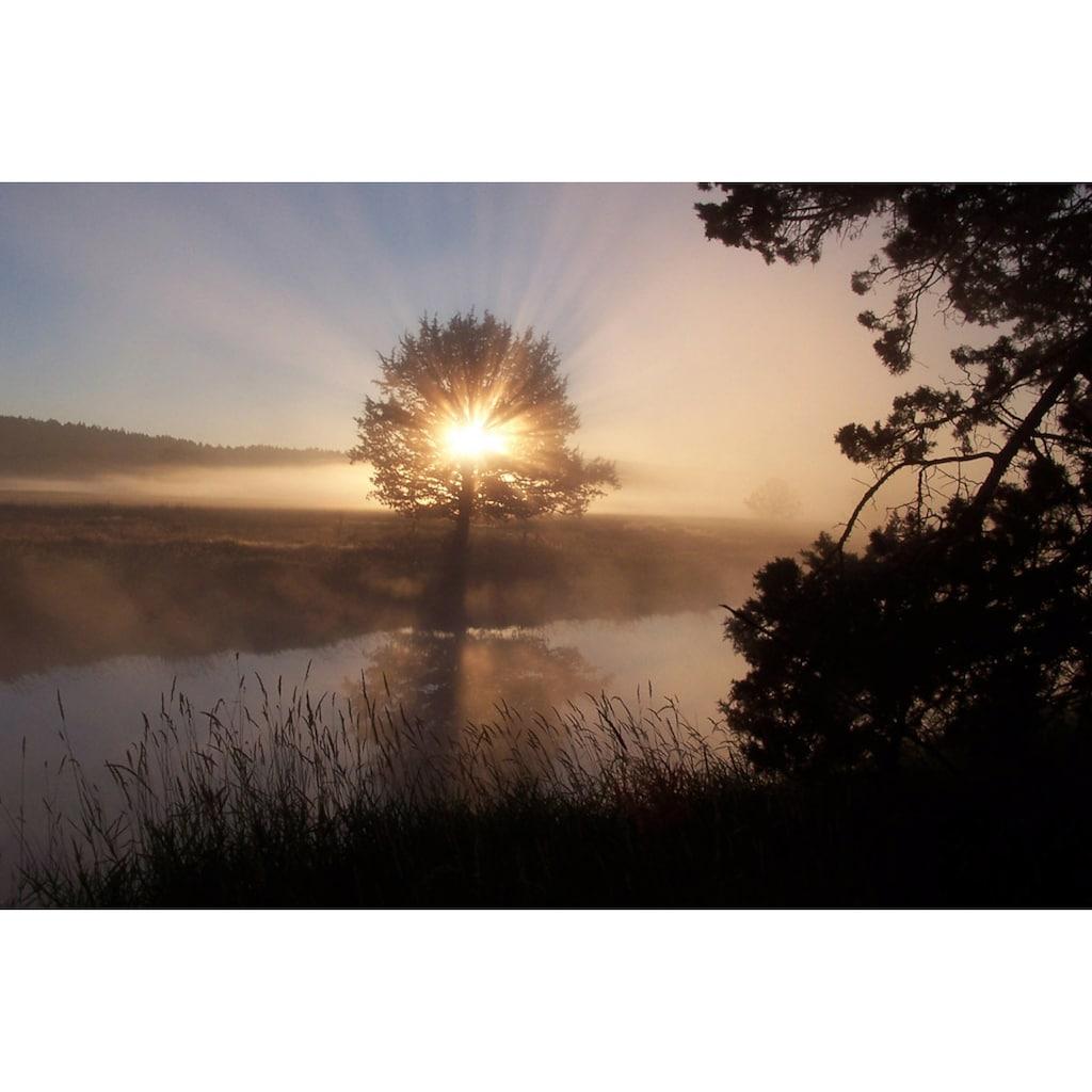 Papermoon Fototapete »Fluss Sonnenaufgang«, Vliestapete, hochwertiger Digitaldruck