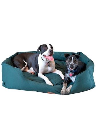 ARMARKAT Hundebett »D01FML - X«, dunkelgrün, verschiedene Größen kaufen