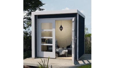 weka Gartenhaus »Design 262« kaufen