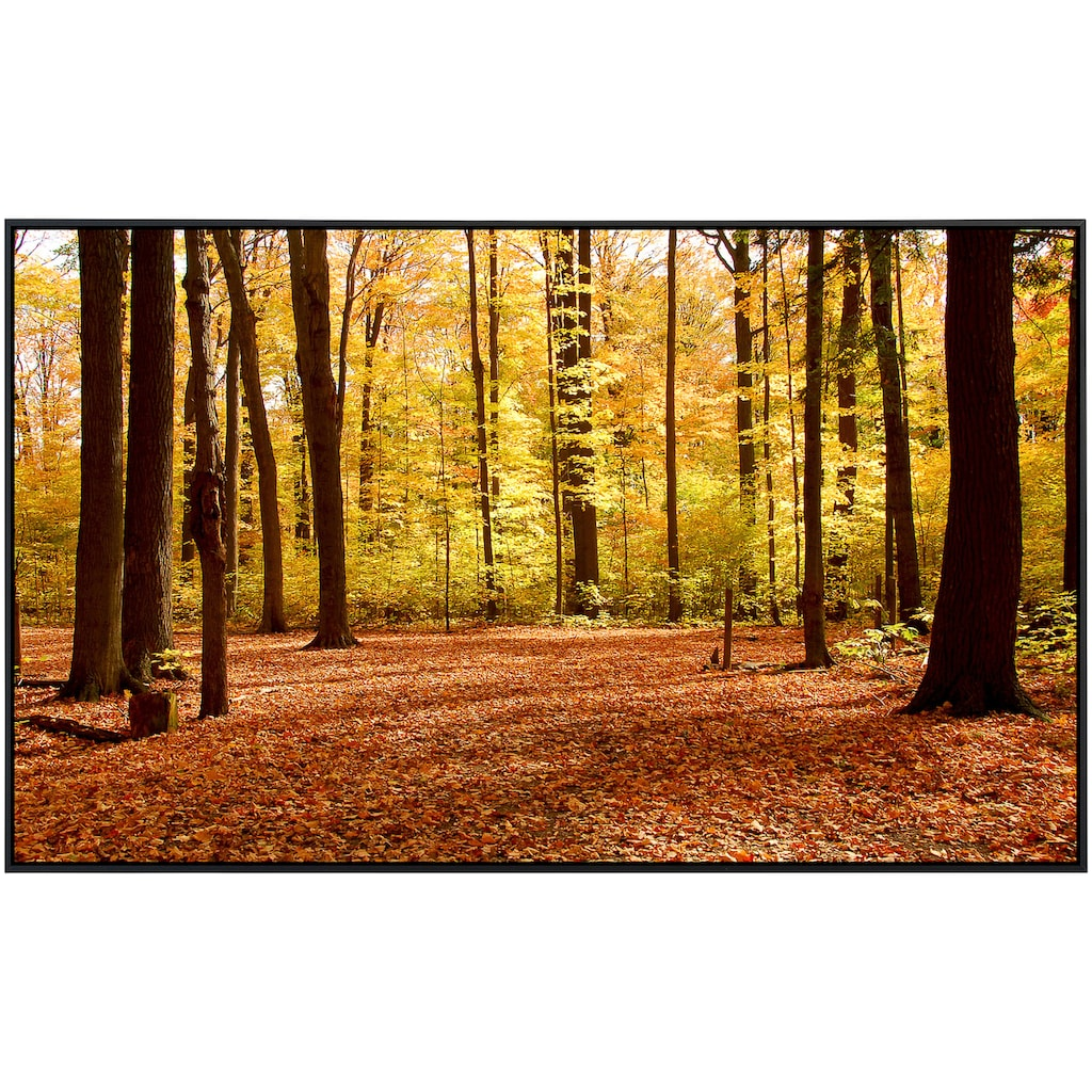 Papermoon Infrarotheizung »Herbstwald«, sehr angenehme Strahlungswärme