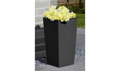 Prosperplast Blumentopf »Rato Square 325«, BxTxH: 33x33x61 cm kaufen