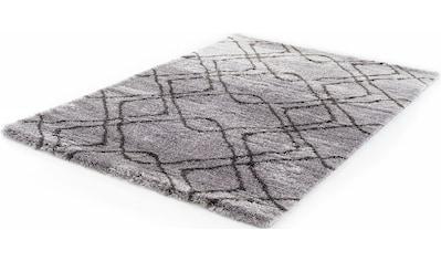 Festival Hochflor-Teppich »Carmella 510«, rechteckig, 45 mm Höhe, Besonders weich durch Microfaser, Wohnzimmer kaufen