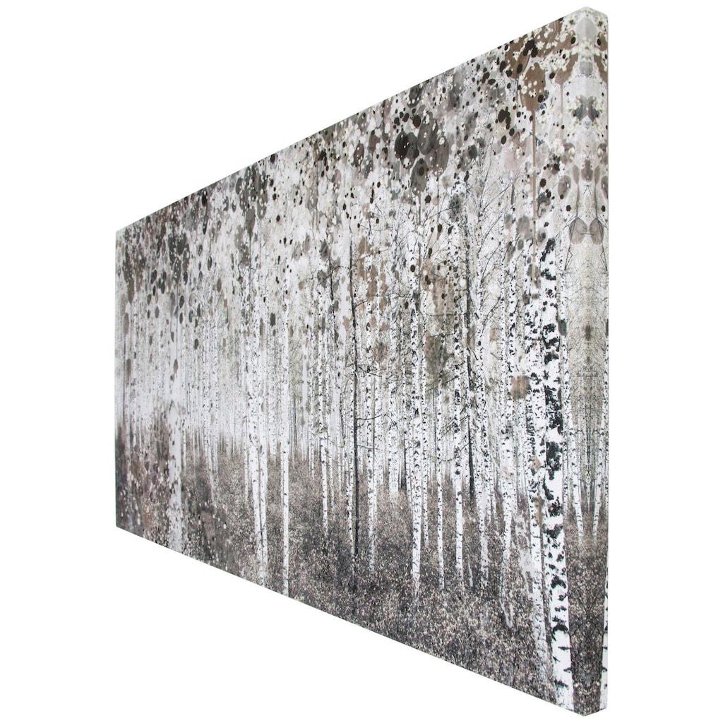 Art for the home Leinwandbild »Birkenwald«, Wald