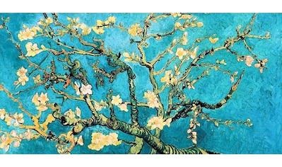 Home affaire Wandbild »Mandorlo in fiore« kaufen