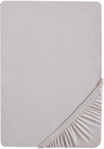 Biberna Spannbettlaken »Samy«, hochwertiges Jersey-Elasthan für Topper geeignet kaufen