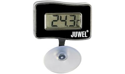 Juwel Aquarien Thermometer »Digital - Thermometer« kaufen