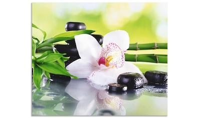 """Artland Küchenrückwand """"Spa Steine Bambus Zweige Orchidee"""", (1 - tlg.) kaufen"""