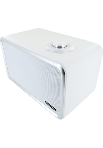 Schwaiger Bluetooth Lautsprecher Retro Design Stereo Speaker TWS »Lederoptik« kaufen