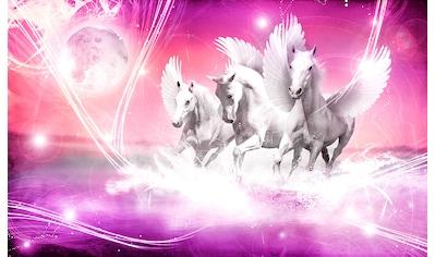 CONSALNET Fototapete »Weißer Pegasus«, Papier, in verschiedenen Größen kaufen