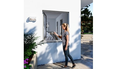Windhager Insektenschutz-Fenster, BxH: 100x120 cm kaufen