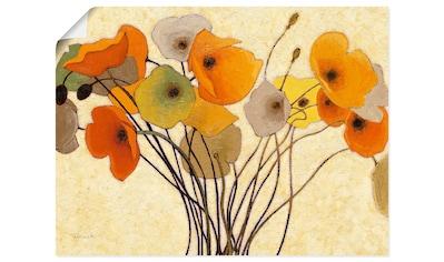 Artland Wandbild »Kürbismohn I«, Blumen, (1 St.), in vielen Größen & Produktarten... kaufen