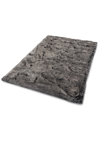 Fellteppich, »Lucia«, ASTRA, rechteckig, Höhe 50 mm, maschinell gewebt kaufen