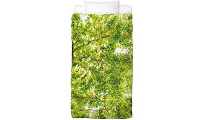 Bettwäsche »Hazel Tree«, Juniqe kaufen