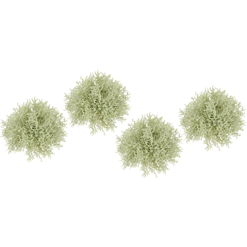 I.GE.A. Kunstpflanze »Mooshalbkugel«, 4er Set