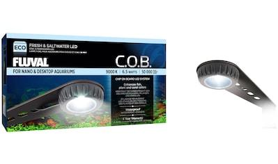 FLUVAL LED Aquariumleuchte »FL Nano LED«, 6,5 Watt kaufen