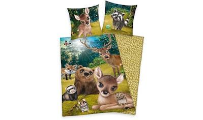 Kinderbettwäsche »Animal Club«, mit tollem Waldtier-Motiv kaufen