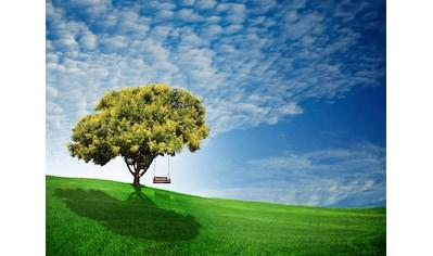 Papermoon Fototapete »Goldener Regenbaum«, Vliestapete, hochwertiger Digitaldruck kaufen