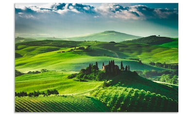 Artland Wandbild »Sonnenaufgang über einer Olivenfarm«, Felder, (1 St.), in vielen... kaufen