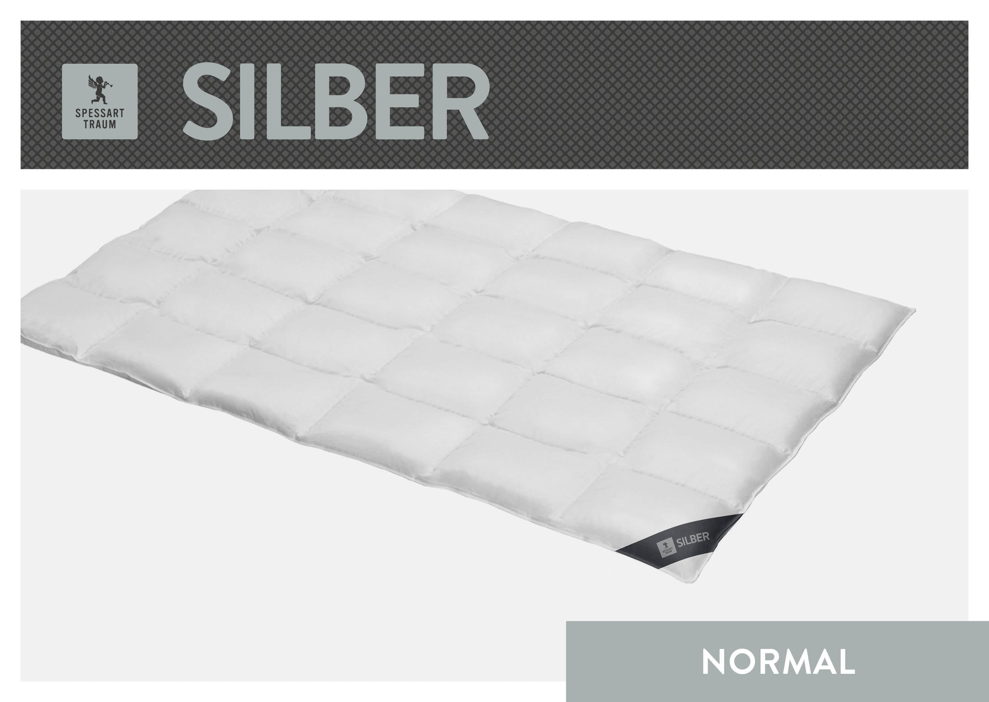 Daunenbettdecke Silber SPESSARTTRAUM normal Füllung: 100% Daunen Bezug: 100% Baumwolle