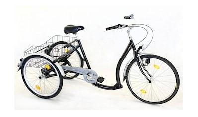 Wild Eagle Dreirad »ECO«, 3 Gang Shimano Nexus Schaltwerk, Nabenschaltung kaufen