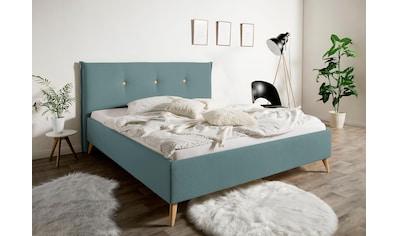 Maintal Polsterbett »Nando«, mit oder ohne Matratze in 2 Ausführungen, in 5 Breiten kaufen