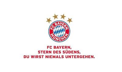 Wall-Art Wandtattoo »FC Bayern München Vereinshymne« kaufen