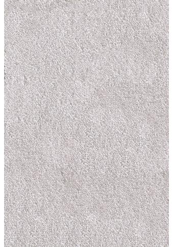 ANDIAMO Teppichboden »Levin hellgrau«, Breite 500 cm kaufen