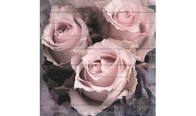 queence Holzbild »Sepia Rosen«, 40x40 cm kaufen