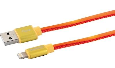 Schwaiger Apple Lightning Kabel, 1,5m Ladekabel für iPhone, iPad iPod »USB 2.0 A zu Lightning« kaufen