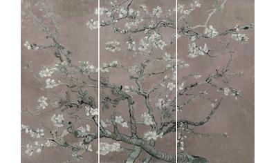 Wandbild »Mandel Blütenbaum  -  Wandbild« (Set) kaufen
