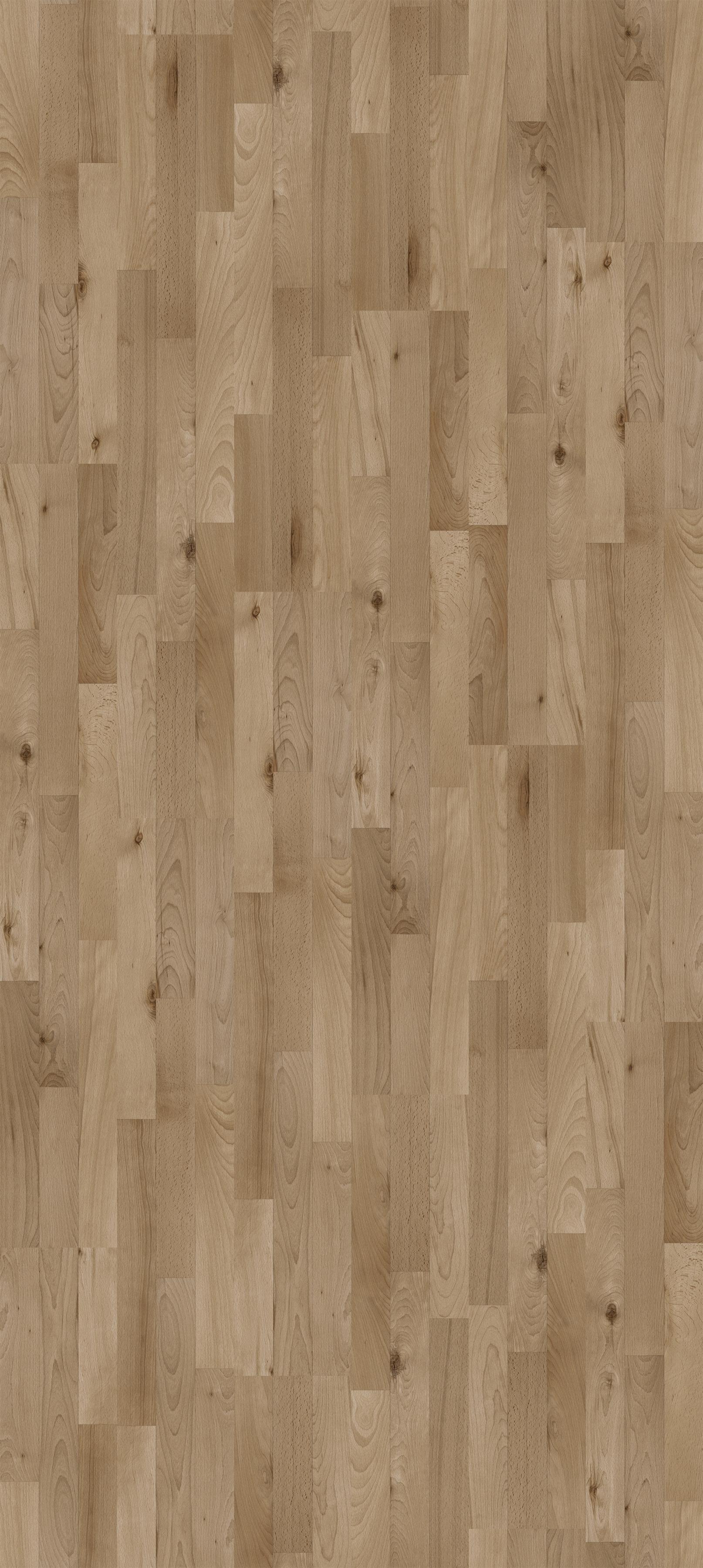 laminat click 39 in buche ged mpft seidenmatte struktur. Black Bedroom Furniture Sets. Home Design Ideas