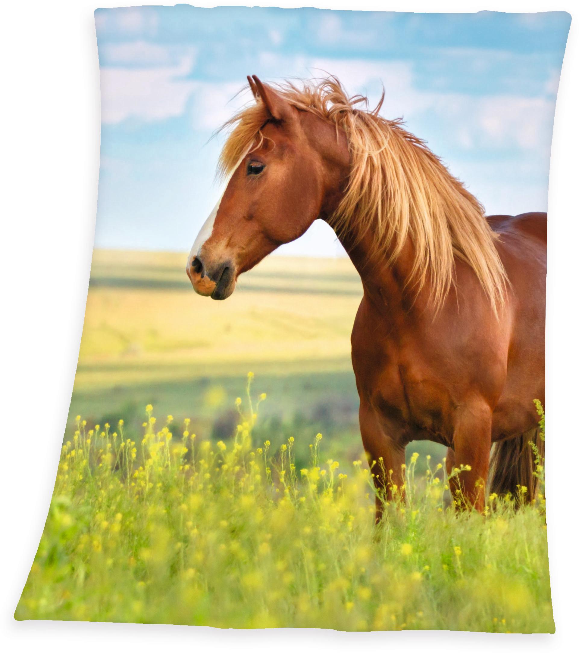 Kinderdecke Pferd Herding Young Collection | Kinderzimmer > Textilien für Kinder > Kinderbettwäsche | Grün | Herding Young Collection