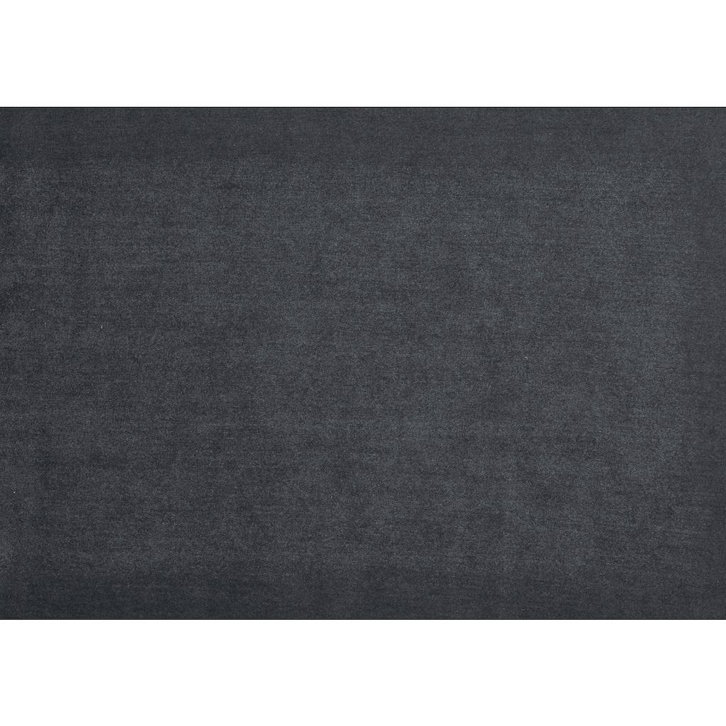 NIEHOFF SITZMÖBEL Esszimmerstuhl »Spirit«, legere Polsterung, 2er-Set