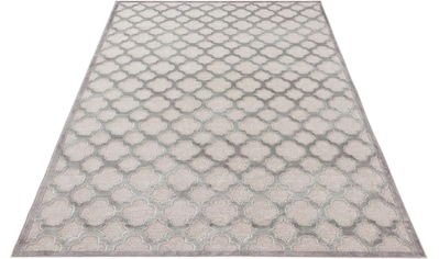 MINT RUGS Teppich »Bryon«, rechteckig, 4 mm Höhe, Viskose Glanz, Hoch-Tief Struktur, Wohnzimmer kaufen